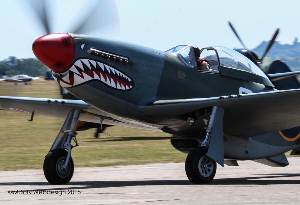 P-51_shark_2015-07-103.jpg