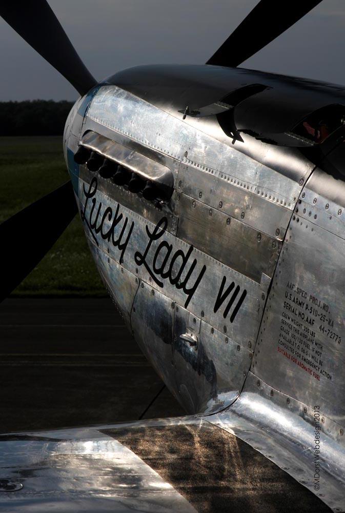 P-51_D-FPSI_2013-08-0917.jpg
