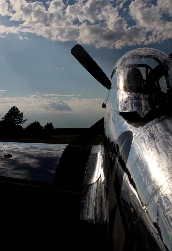 P-51_D-FPSI_2013-08-0918.jpg