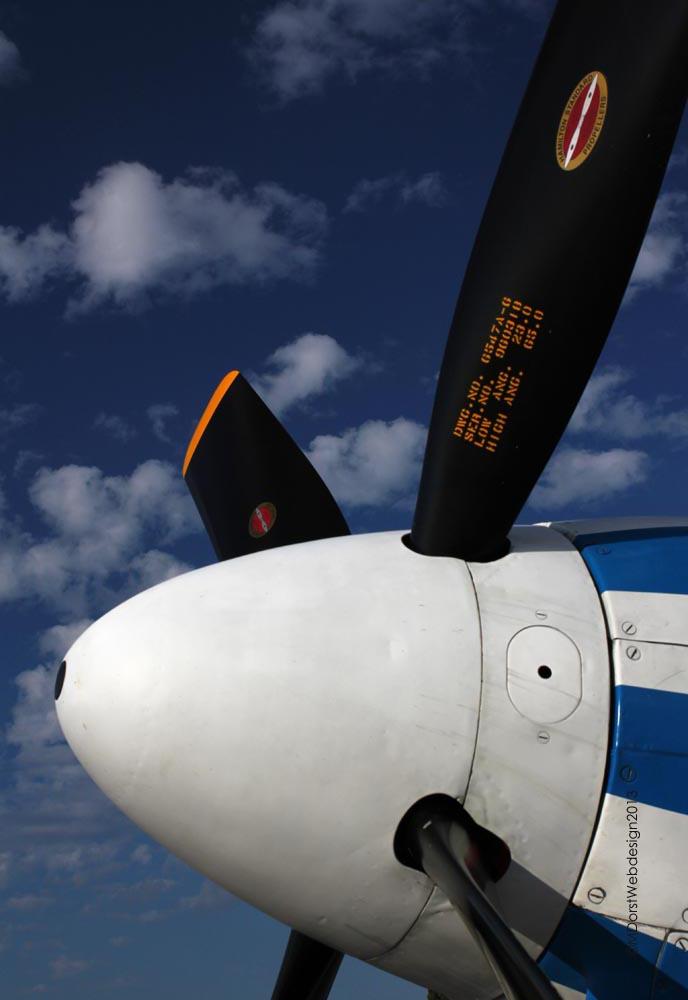 P-51_D-FPSI_2013-08-093.jpg
