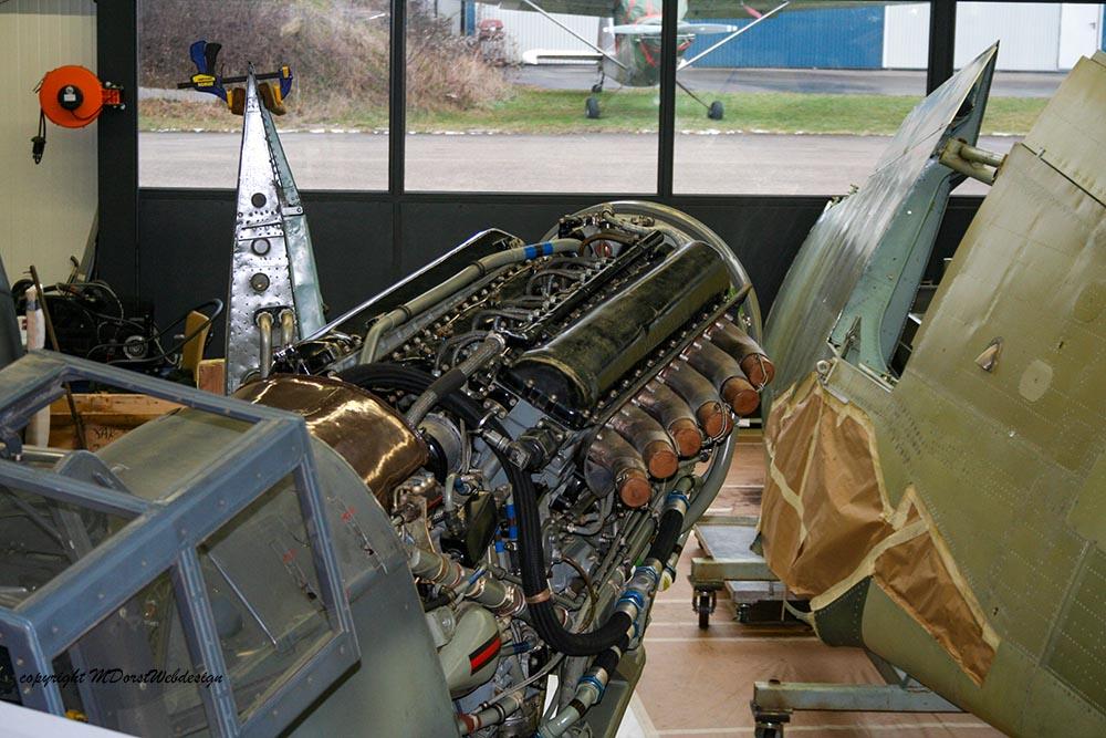 Buchon_D-FMVS_2010-01-29_-16.jpg