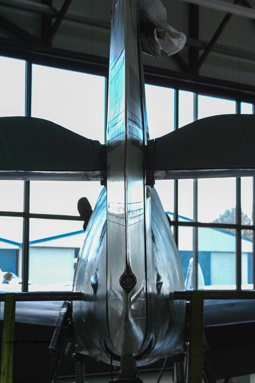 Buchon_D-FMVS_2010-03-296.jpg