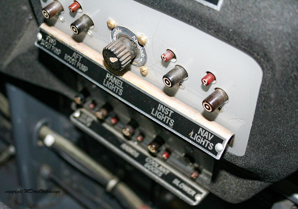 Buchon_D-FMVS_2010-04-30_-22.jpg