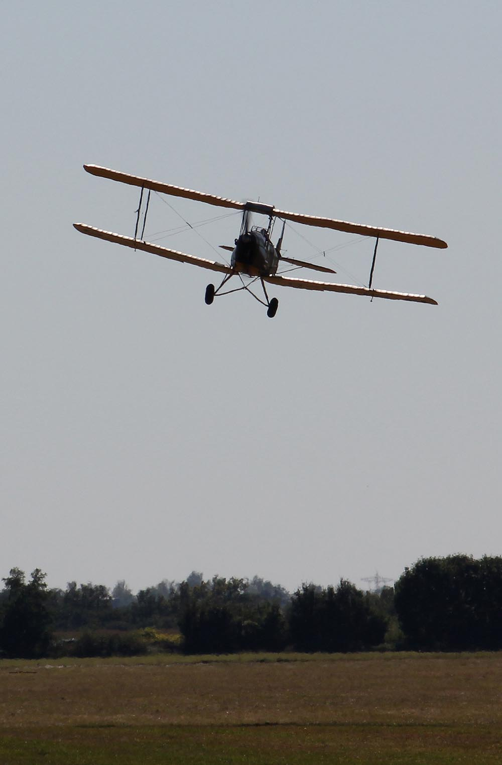 De_Havilland_TigerMoth_D-ECTM_2012-08-17_-18.jpg